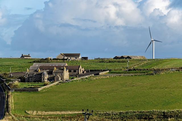 větrný mlýn na louce