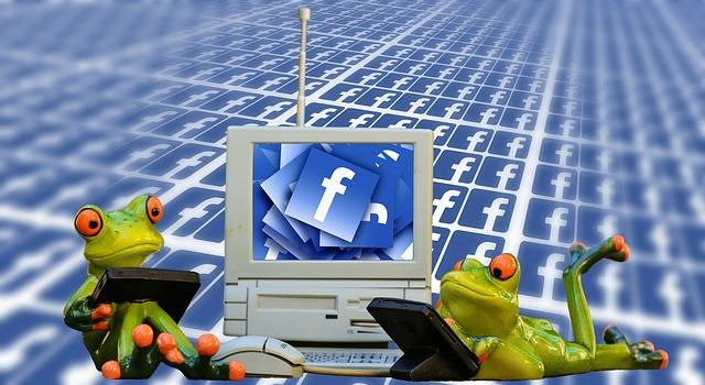 Sociální síť a žabičky